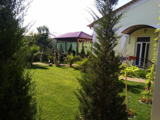 B&B Green house Samarkand - Image