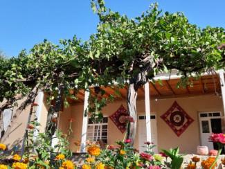 Urgut Hills Guesthouse - Image